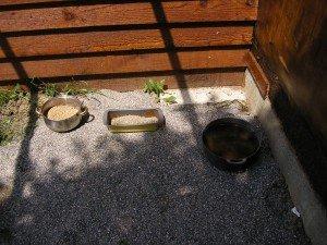 Même Thérèse a fourni les plats pour le grain, et le chaudron est là pour leur montrer ou elles finiront si elles ne pondent pas!